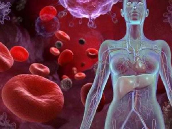 признаки заболевания анемия