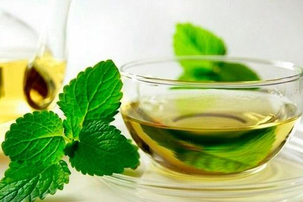 Чем полезна мята для организма в чае