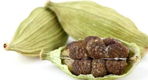 плод растения кардамон