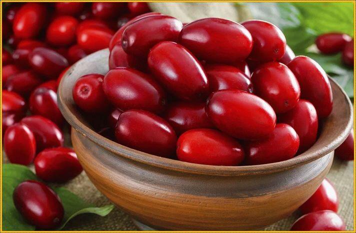 как выглядят плоды кизила