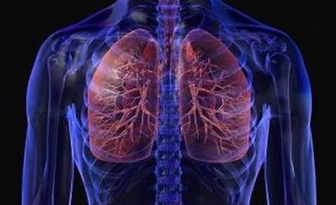 болезнь легких хронический бронхит