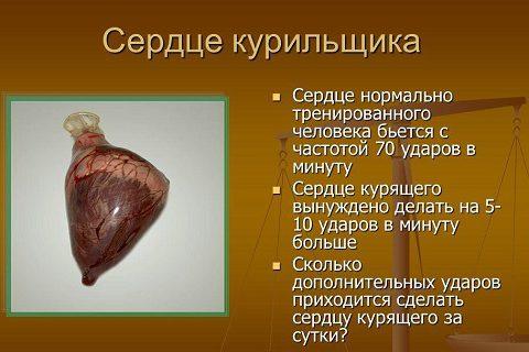 сердце курильщика