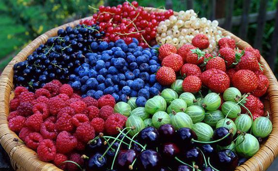 ягоды продукт антиоксидант