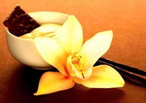 стручки и цветки ванили