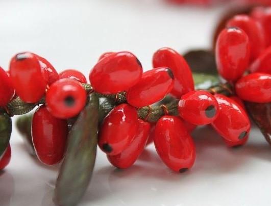 ягоды растения барбарис
