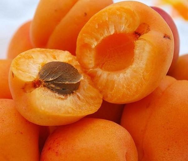 полезные плоды абрикосов
