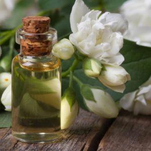 полезное масло жасмина