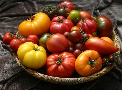различные сорта помидор