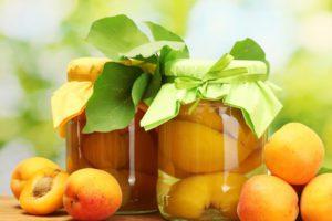 заготовка плодов абрикоса на зиму