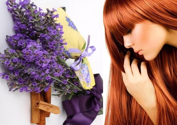 лечение волос лавандой