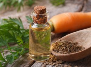 морковное масло из семян