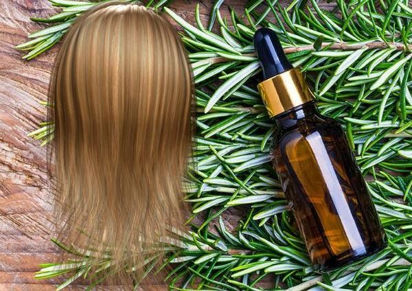 розмарин для волос польза