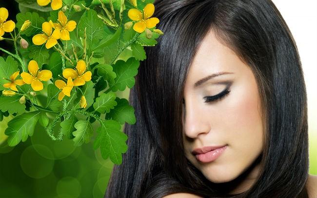 средства для волос с чистотелом