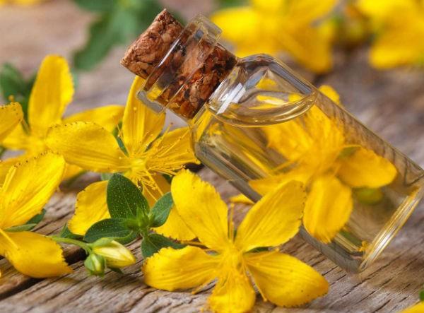 масло из растения чистотел