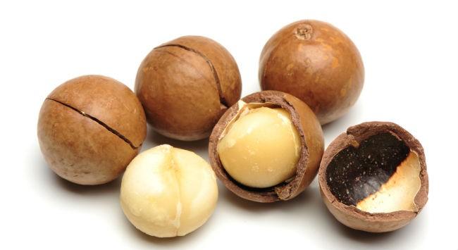плоды макадамия