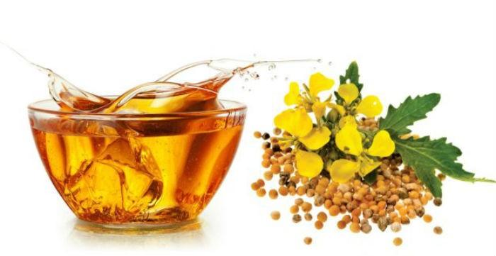 семена и масло горчицы