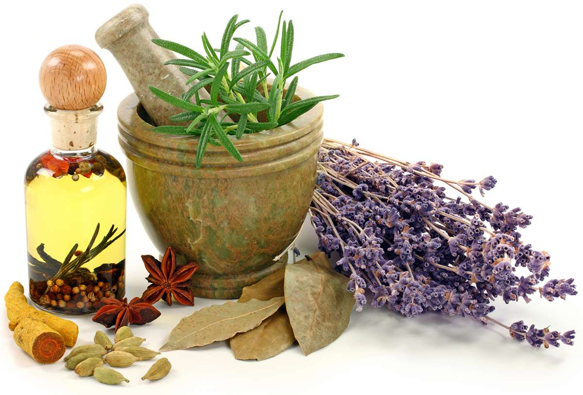чем помогает травы при заболеваниях нервов
