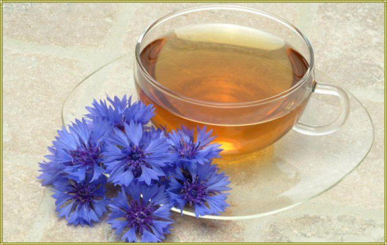 польза чая из василька