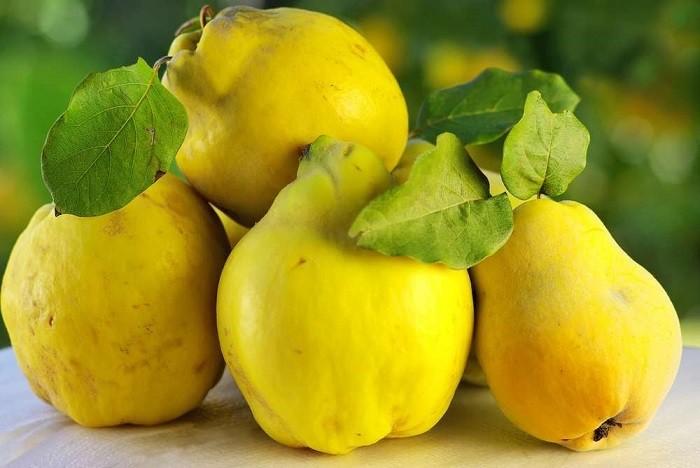 фрукт айва
