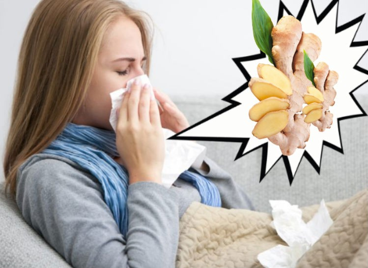 как использовать имбирь от простуды