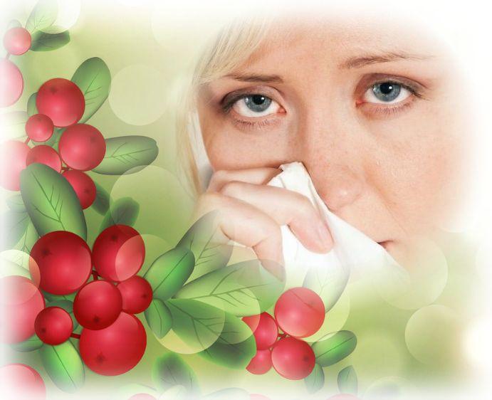 лечение простуды клюквой
