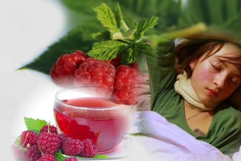 ягоды малины от ангины