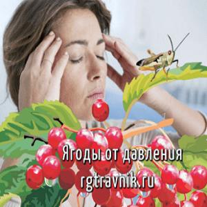 ягоды при гипертонии