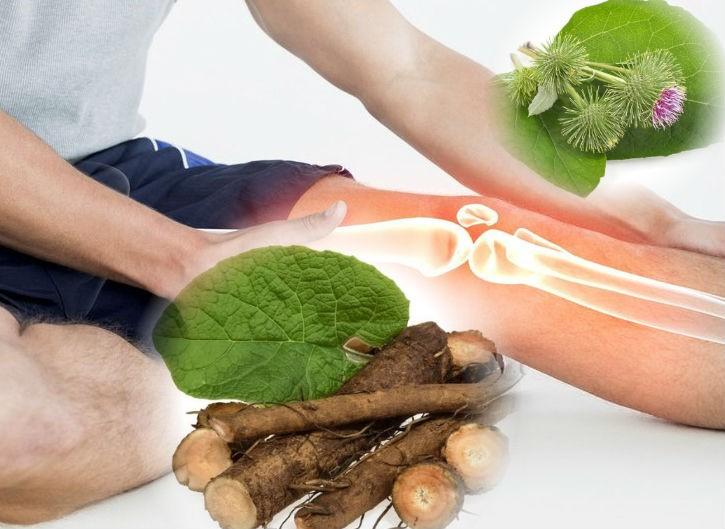 польза лопуха при больных суставах