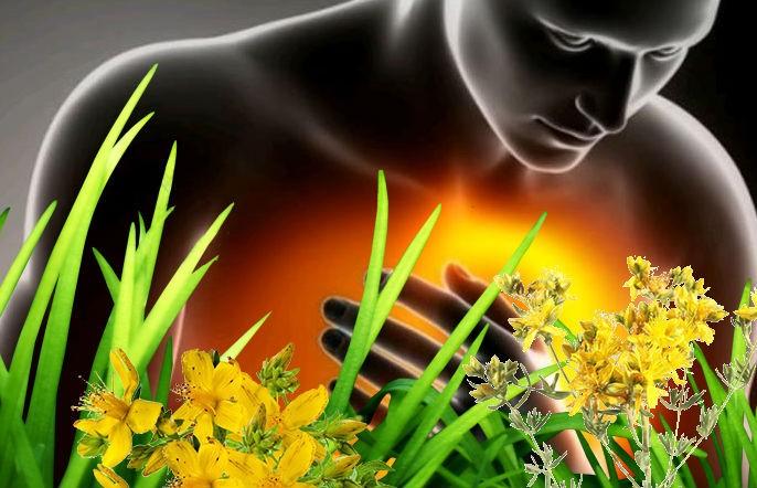 лечение изжоги травами