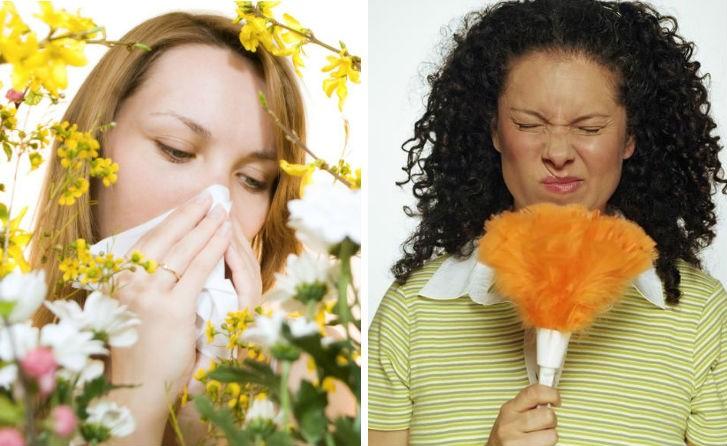 аллергия на пыль и цветы