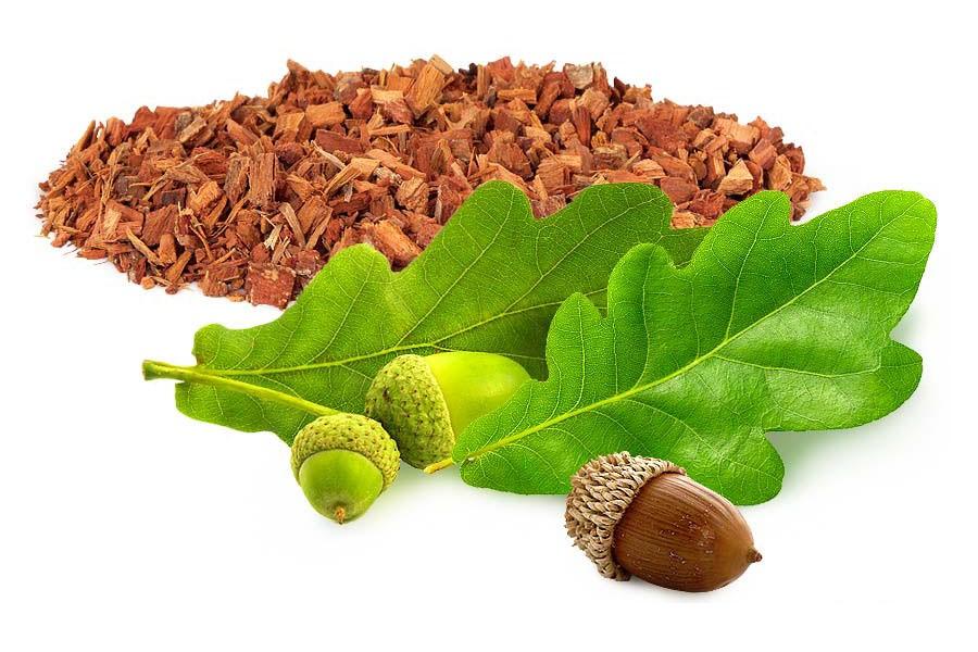дубовая кора и листья