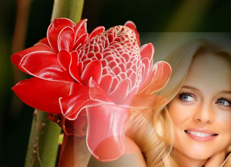 женщина и цветок имбиря