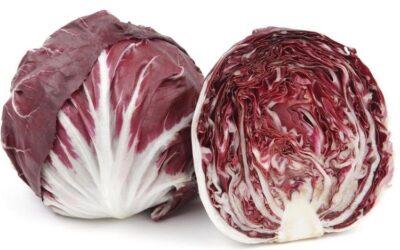 кочанный салат Радичил
