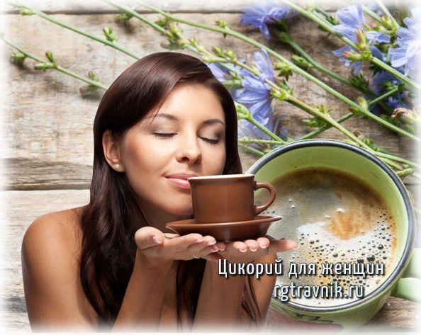 полезные свойства цикория для женщин