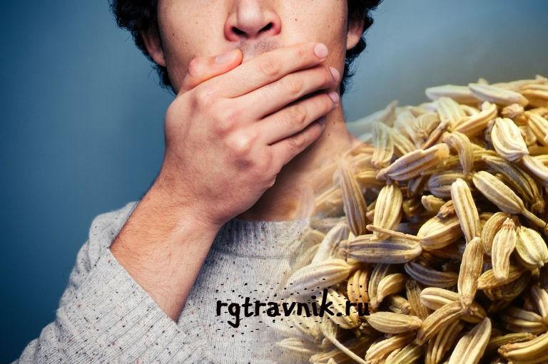 фенхель от запаха из рта