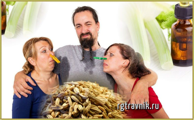 фехель от дурного запаха тела