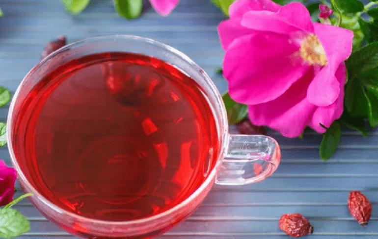 ягоды и листья шиповника для чая