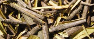 Как выглядит кора калины
